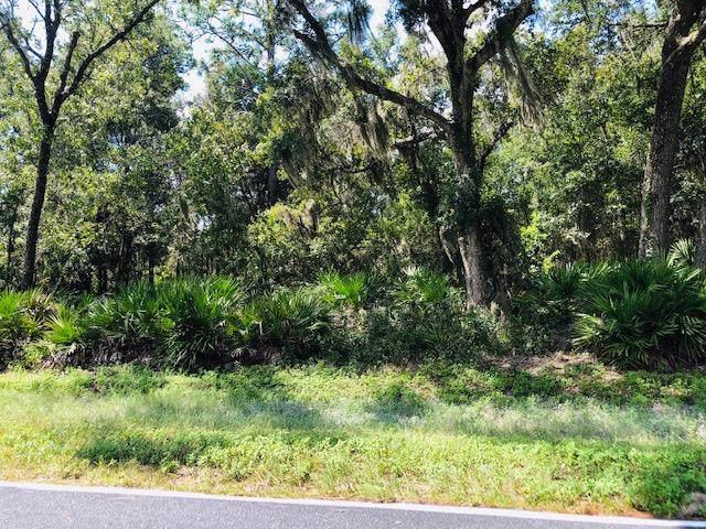 60 Street NW, Chiefland, FL 32626 (MLS #778673) :: Pristine Properties