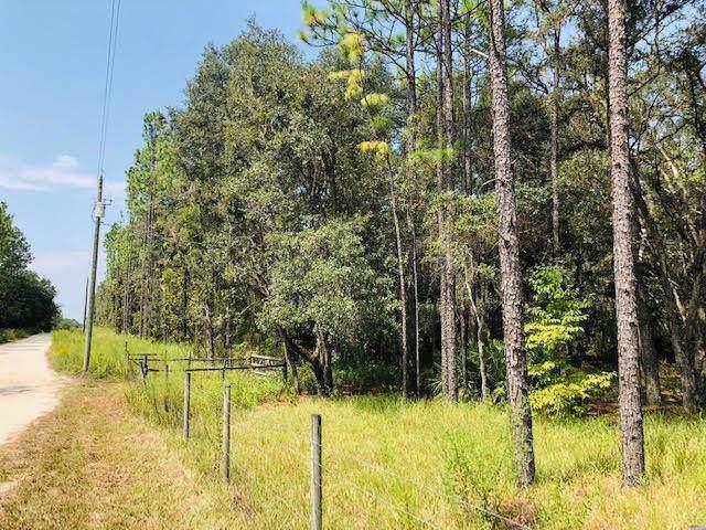 10951 78th Ln NE, Bronson, FL 32621 (MLS #778733) :: Pristine Properties