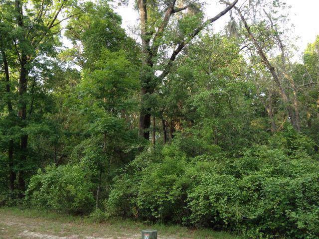 Katherine Way, Fanning Springs, FL 32693 (MLS #778783) :: Pristine Properties