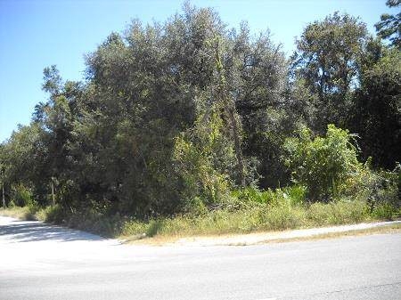 TBD Hwy 351 NE, Old Town, FL 32680 (MLS #778797) :: Compass Realty of North Florida