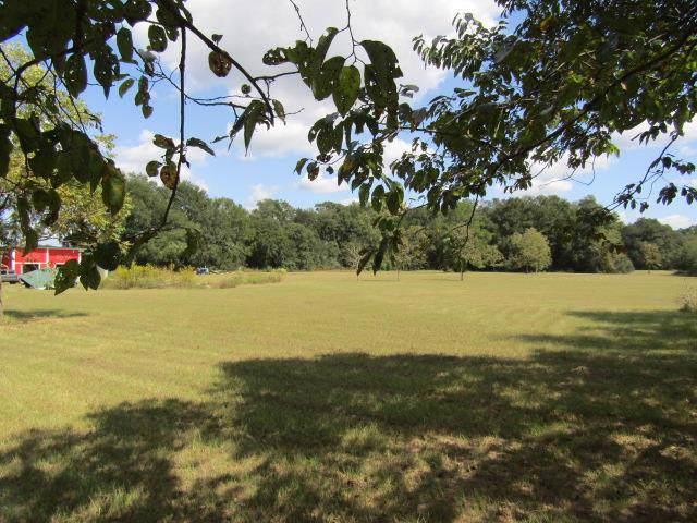 1799 Cr 341 SW, Bell, FL 32619 (MLS #778851) :: Pristine Properties