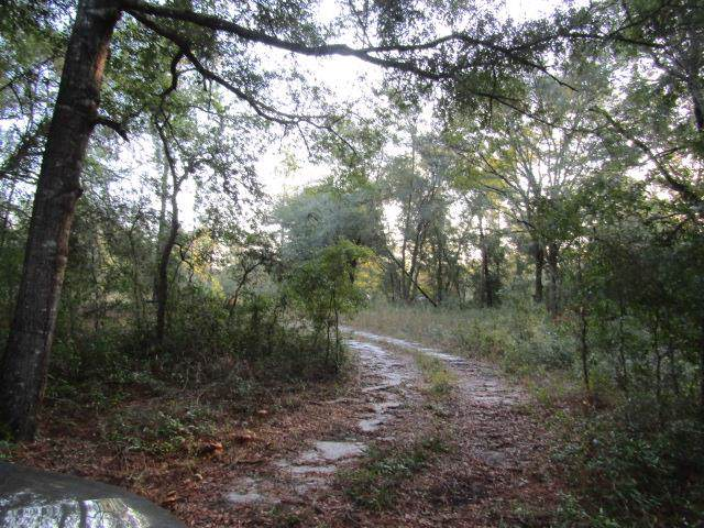 TBD 1st Ave. NW, Branford, FL 32008 (MLS #778946) :: Bridge City Real Estate Co.