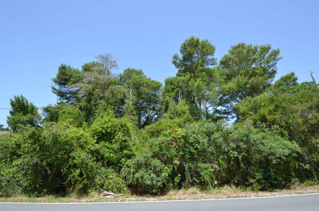 Lot 4 165th Ave SW, Cedar Key, FL 32625 (MLS #779311) :: Better Homes & Gardens Real Estate Thomas Group