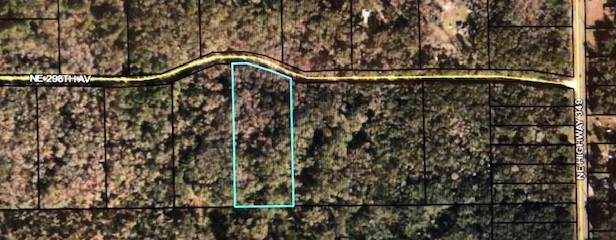 5 acres 298 Ave. NE, Old Town, FL 32680 (MLS #779364) :: Pristine Properties