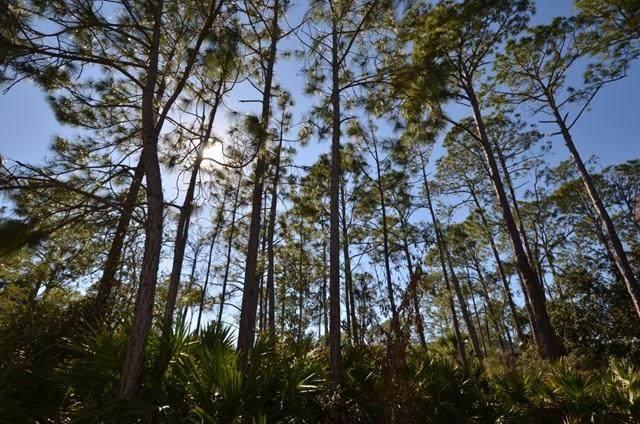 Lot 26 Museum Dr Easement, Cedar Key, FL 32625 (MLS #779481) :: Compass Realty of North Florida
