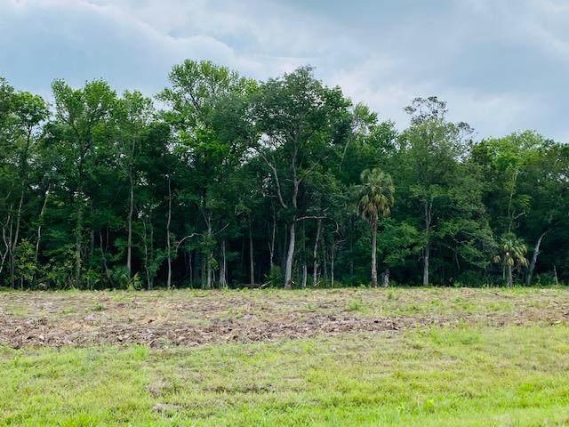 23 Acres County Road 326 SE, Morriston, FL 32668 (MLS #780036) :: Pristine Properties