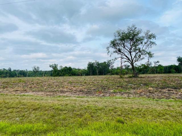 67 Acres County Road 326 SE, Morriston, FL 32668 (MLS #780038) :: Pristine Properties