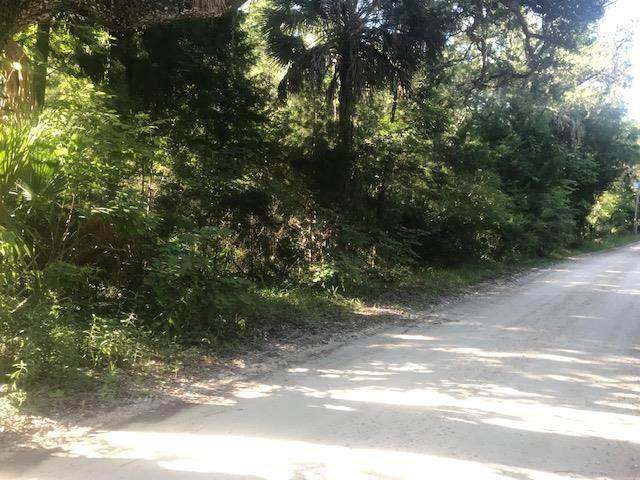 1416 Palm Street Ne, Steinhatchee, FL 32359 (MLS #780176) :: Compass Realty of North Florida