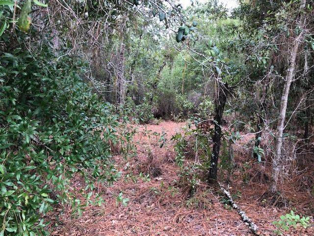 .78 acre 122 Ave. & 64 Place NE, Williston, FL 32696 (MLS #780516) :: Better Homes & Gardens Real Estate Thomas Group