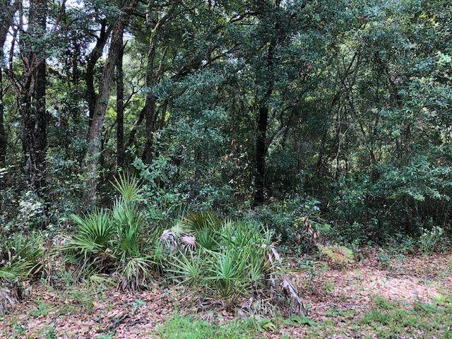 .95 acre 790 St & Ne 441 Ave NE, Old Town, FL 32680 (MLS #780518) :: Compass Realty of North Florida