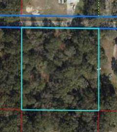 6570 138th Place NW, Chiefland, FL 32626 (MLS #780527) :: Bridge City Real Estate Co.