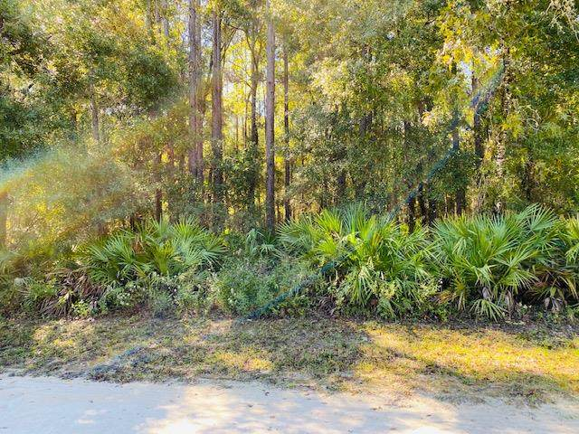 682 Avenue NE, Old Town, FL 32680 (MLS #780709) :: Compass Realty of North Florida