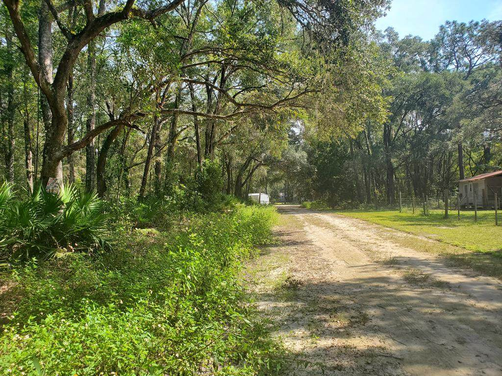 Lot 24 466th Ave - Photo 1