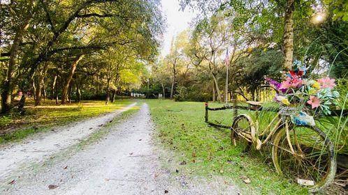 8850 NW 127 PL, Chiefland, FL 32626 (MLS #780799) :: Pristine Properties