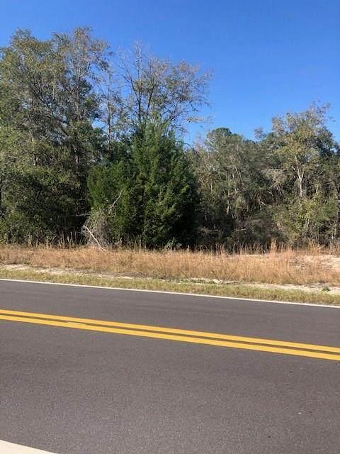 138 Cr NE, Branford, FL 32008 (MLS #780937) :: Pristine Properties