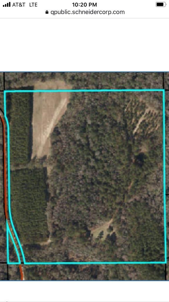 0000 Mt Olive Church Rd SW, Lamont, FL 32336 (MLS #780957) :: Pristine Properties