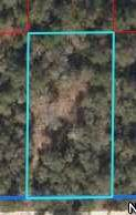10131 83rd Lane NE, Bronson, FL 32621 (MLS #780976) :: Compass Realty of North Florida