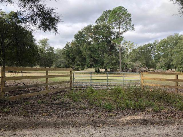 25th Ave NW, Bell, FL 32619 (MLS #781009) :: Compass Realty of North Florida
