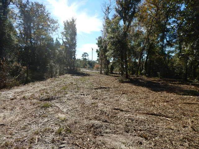 Sw 358 Hwy, Steinhatchee, FL 32359 (MLS #781062) :: Better Homes & Gardens Real Estate Thomas Group