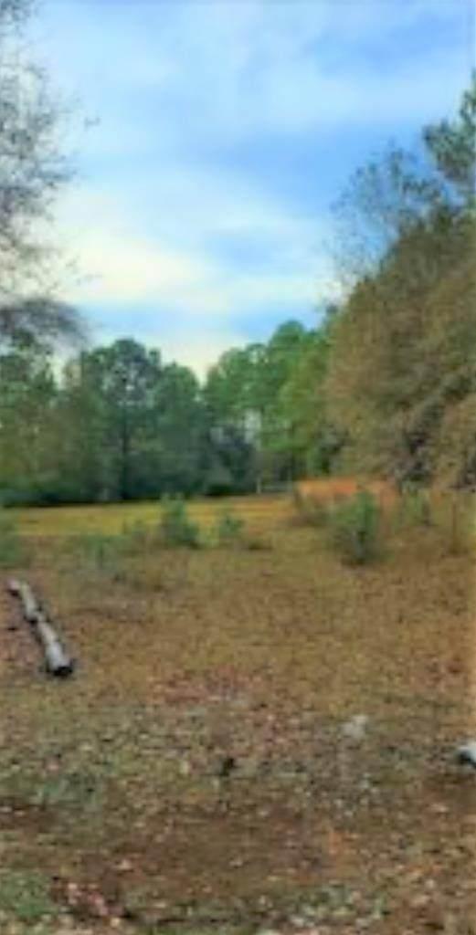 Wacissa Terrace, Greenville, FL 32331 (MLS #781240) :: Compass Realty of North Florida