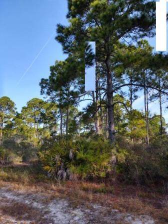 100th Place, Cedar Key, FL 32625 (MLS #781315) :: Hatcher Realty Services Inc.