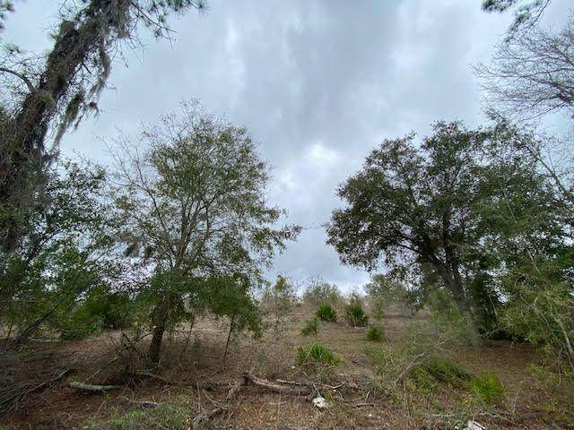 000 55th Ave SE, Trenton, FL 32693 (MLS #781410) :: Compass Realty of North Florida