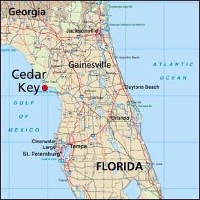 849 3 Street 12 Units, Cedar Key, FL 32625 (MLS #781440) :: Hatcher Realty Services Inc.