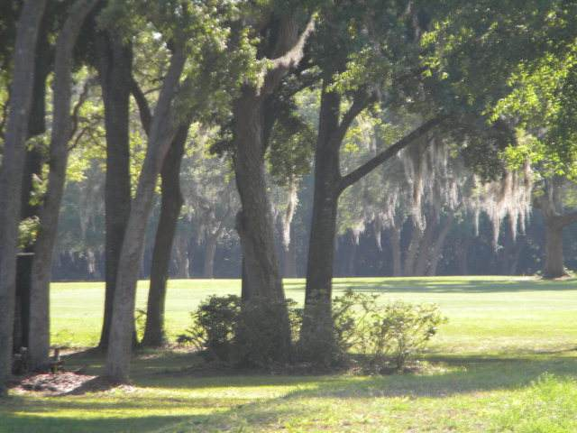 Lot 16 92nd Ct NW, Chiefland, FL 32626 (MLS #781780) :: Hatcher Realty Services Inc.