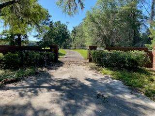 11183 NE County Road 351, Old Town, FL 32680 (MLS #781824) :: Better Homes & Gardens Real Estate Thomas Group