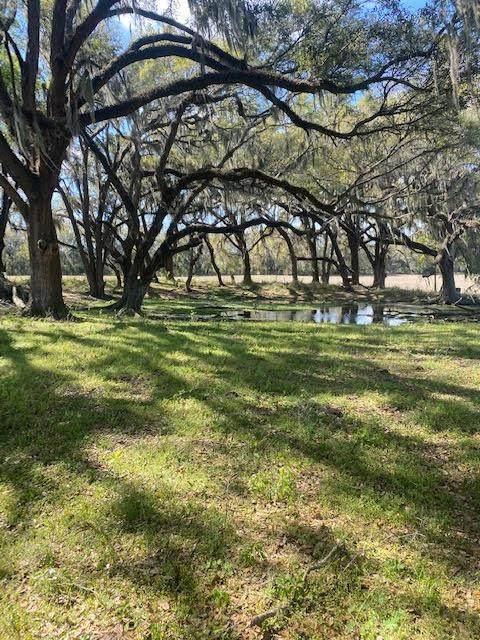 75 acres 97th Trl - Photo 1