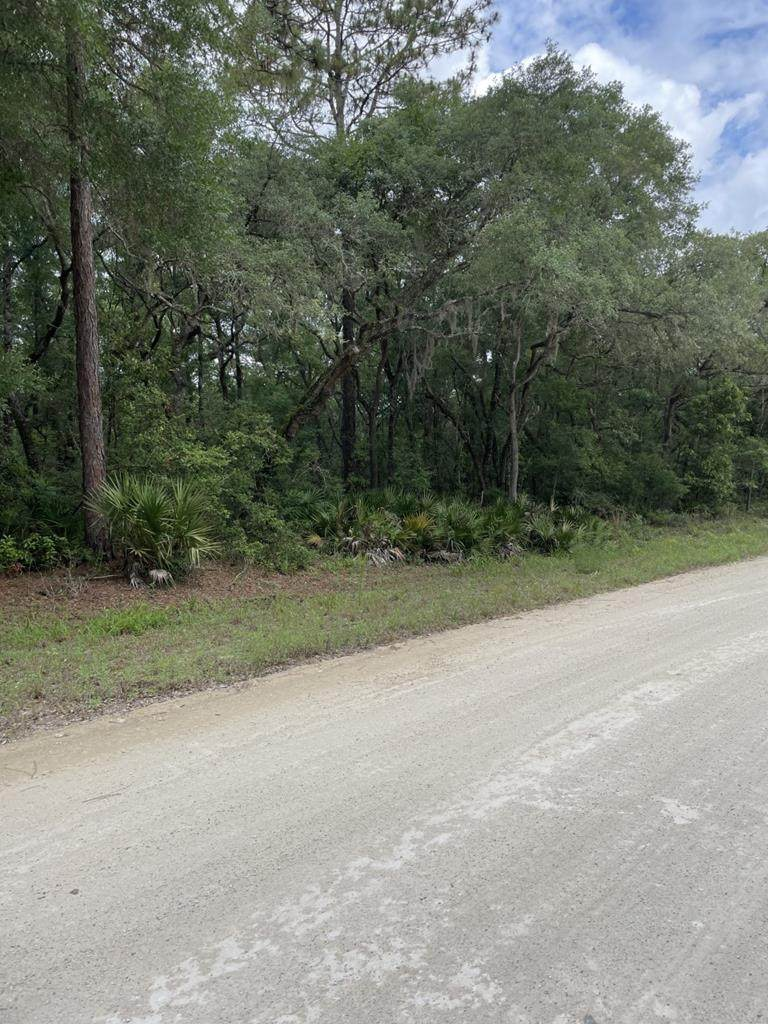 Lot 12 86th Ave - Photo 1