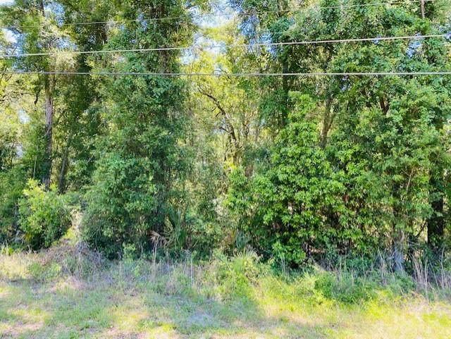 Hwy 19 NW, Fanning Springs, FL 32693 (MLS #782229) :: Pristine Properties
