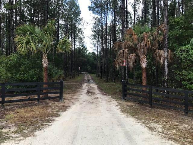 2041 Hwy 361 SW, Steinhatchee, FL 32539 (MLS #782247) :: Pristine Properties