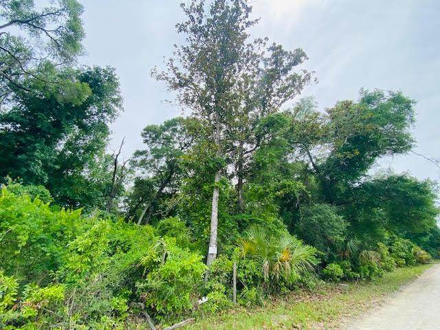5 acres 103rd Ln NW, Chiefland, FL 32626 (MLS #782269) :: Better Homes & Gardens Real Estate Thomas Group