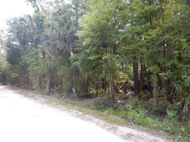 TBD Palm St NE, Steinhatchee, FL 32359 (MLS #782273) :: Bridge City Real Estate Co.