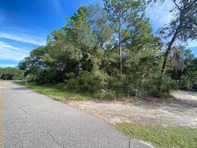 461 Kings Creek Cir, Steinhatchee, FL 32359 (MLS #782838) :: Compass Realty of North Florida