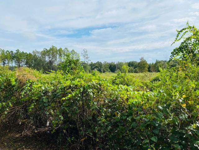 5251 35th St NW, Chiefland, FL 32626 (MLS #782989) :: Compass Realty of North Florida