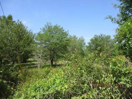 Lot 4 465 Avenue NE, Old Town, FL 32680 (MLS #774733) :: Better Homes & Gardens Real Estate Thomas Group