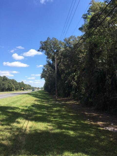 LOT 10 Hwy 19 SE, Old Town, FL 32680 (MLS #776611) :: Pristine Properties