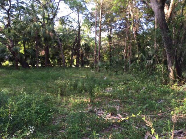 TBD Cedar NE, Steinhatchee, FL 32359 (MLS #777104) :: Hatcher Realty Services Inc.