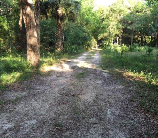 TBD Cedar NE, Steinhatchee, FL 32359 (MLS #777107) :: Hatcher Realty Services Inc.