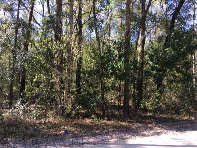 Lot 54 36th Lane NW, Bell, FL 32619 (MLS #777439) :: Hatcher Realty Services Inc.