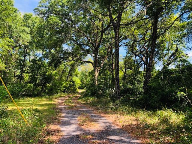 115 Street NW, Chiefland, FL 32626 (MLS #777765) :: Pristine Properties