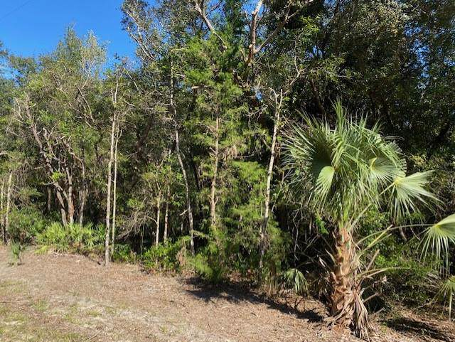 108 Terrace NW, Chiefland, FL 32626 (MLS #779018) :: Pristine Properties