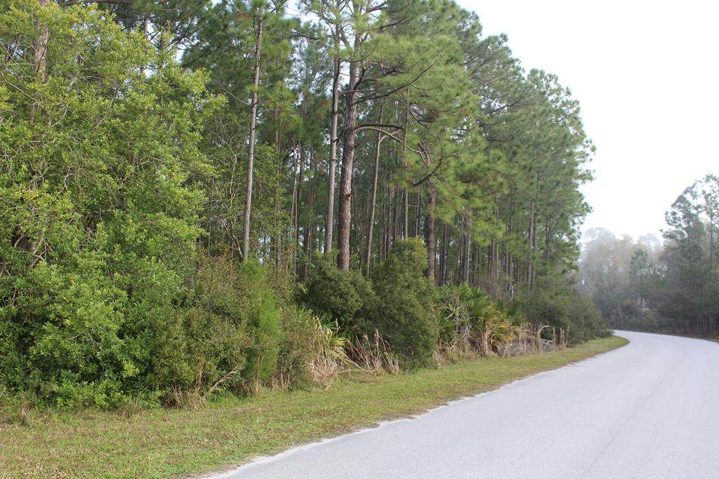 LOT 3 108TH AVE - Photo 1