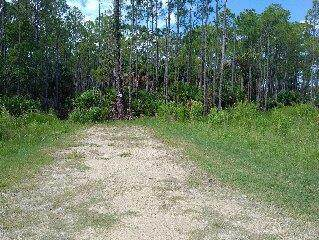 LOT 7 104 Street SW, Cedar Key, FL 32625 (MLS #780611) :: Hatcher Realty Services Inc.