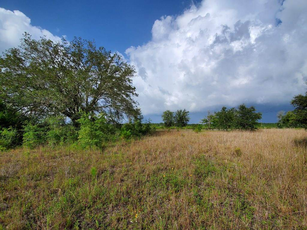 LOT 86 Hwy 55A - Photo 1