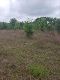00 State Rd 51 - Photo 1