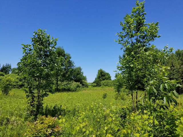 #16 Brooks Ln, Egg Harbor, WI 54209 (#134117) :: Town & Country Real Estate