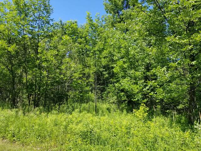 #11 Brooks Ln, Egg Harbor, WI 54209 (#134128) :: Town & Country Real Estate
